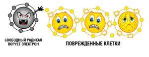 антиоксиданты клетки