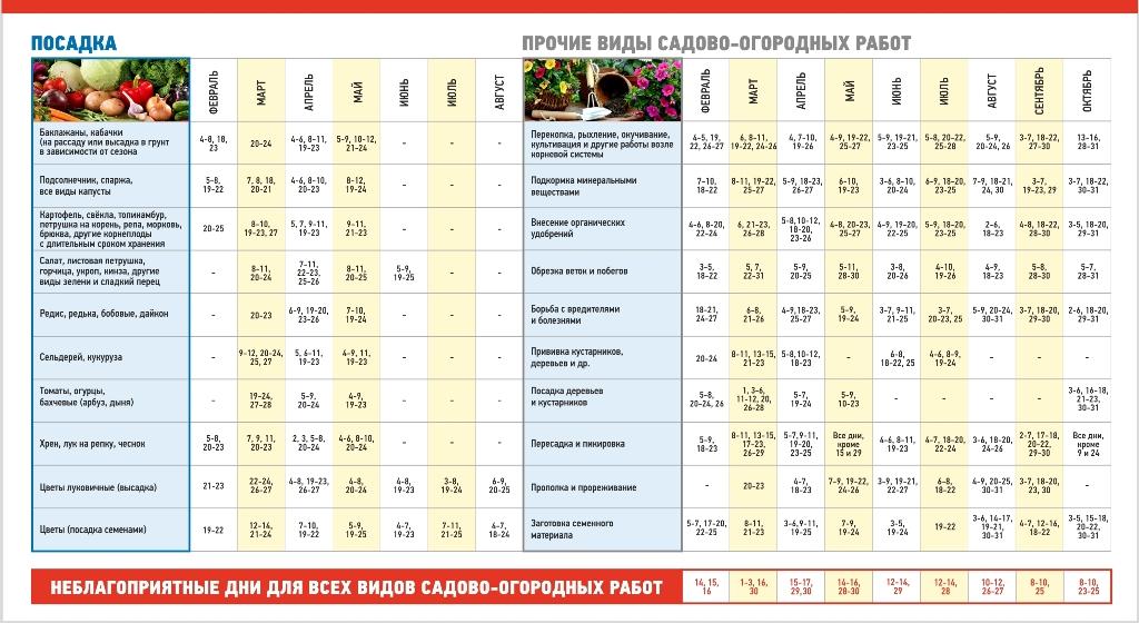 Посевной календарь для всех огородников 2019 - как сажаем в марте и апреле месяце лучшие дни, подкормка растений, пересадка в открытый грунт