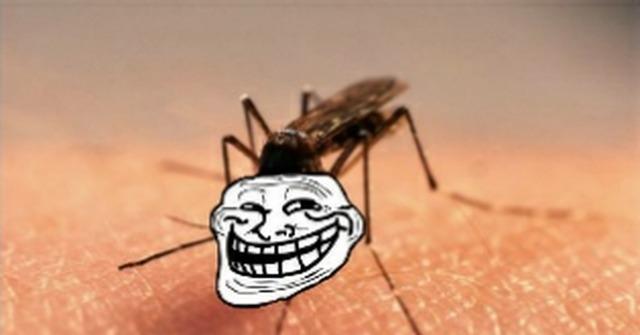 От комариных укусов для детей народными средствами